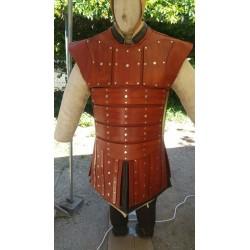 Armure de combat à plaques type viking